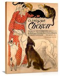 Clinique Cheron Veterinaire Vintage Printed On Canvas