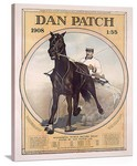 Dan Patch Vintage Printed On Canvas
