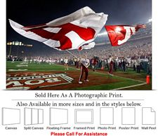 University of Alabama Tide Flags at Football Game Photo Print 24
