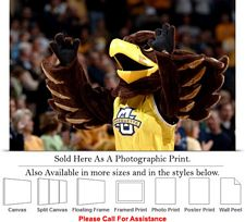 Marquette University Golden Eagle Spirit Mascot Photo Print 24