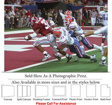 University of Alabama Touch Down Against Gators Photo Print 24