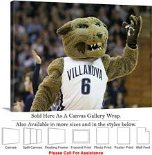 Villanova University College Campus Mascot Wildcat Canvas Wrap 30