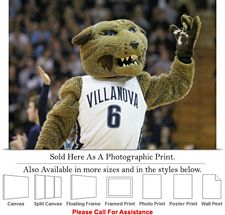 Villanova University College Campus Mascot Wildcat Photo Print 24