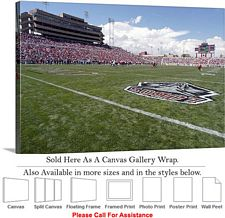 University of New Mexico Football Stadium Field Canvas Wrap 30