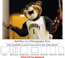 University of Vermont College Mascot Catamount Photo Print 24