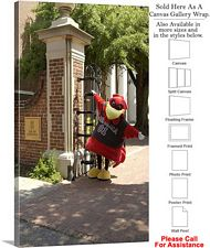 South Carolina University Campus Mascot at Gates Canvas Wrap 18