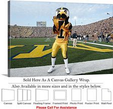 "University of Iowa Herky Pumps Football Mascot Canvas Wrap 30"" x 20"""