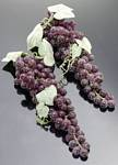Fake Food Grapes Purple Long (pack of 2 Bunches)