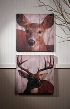 Deer Couple Canvas Set of 2