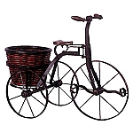 Iron Bicycle with Round basket