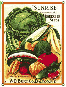 Image Result For Vintage Vegetable Garden Signs