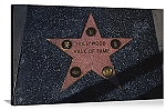 Los Angeles, California Hollywood Walk of Fame Star Panorama Picture