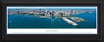 Chicago, Illinois Deluxe Framed Skyline Picture 10