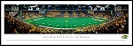 North Dakota State University Framed Stadium Picture