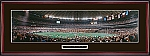 Houston Oilers Houston Astrodome Framed Picture