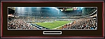 Houston Texans Reliant Stadium Framed Picture