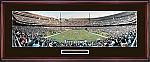 Philadelphia Eagles Veterans Stadium, Final Season 2003 Framed Picture