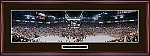 Detroit Red Wings 2002 Stanley Cup Framed Picture