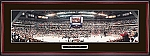 Detroit Red Wings 1998 Celebration Framed Picture