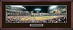 Houston Astros-2005 World Series Framed Picture