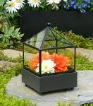 Small Tabletop Terrarium