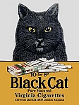 Black Cat Virginia Cigarettes Vintage Tin Sign