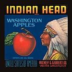 Indian Head Brand Washington Apples Vintage Tin Sign