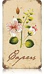 Capers Vintage Metal Sign
