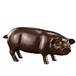 Shy Piggy Bank