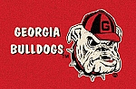 Georgia Bulldogs Alternate Team Logo Area Rug