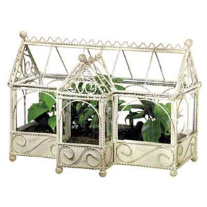 Glass and Metal Terrarium with Wire Accents Distressed White