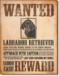 Wanted Labrador Retriever Tin Sign