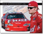 Dale Jr. Bud Racing Tin Sign