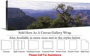 "Grand Canyon National Park in Arizona Landscape-87 Canvas Wrap 48"" x 16"""