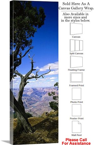 "Grand Canyon National Park in Arizona Landscape-9 Canvas Wrap 16"" x 48"""