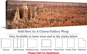 "Grand Canyon National Park in Arizona Landscape-46 Canvas Wrap 48"" x 16"""