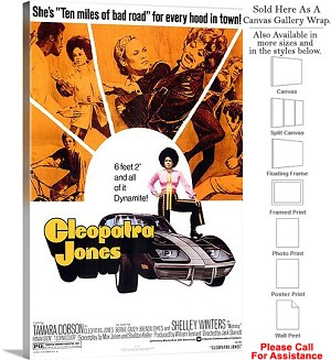 "Cleopatra Jones Famous Action Movie Theater Art Canvas Wrap 20"" x 30"""
