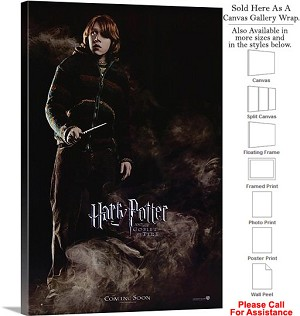 "Harry Potter and the Goblet of Fire Movie Art-5 Canvas Wrap 20"" x 30"""
