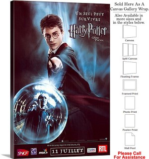 "Harry Potter the Order of the Phoenix Movie Art Canvas Wrap 20"" x 30"""