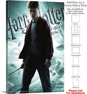 "Harry Potter and the Half Blood Prince Movie Art Canvas Wrap 20"" x 30"""