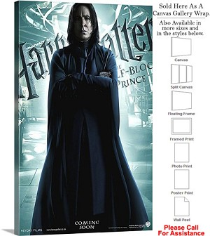 "Harry Potter and the Half Blood Prince Movie Art-5 Canvas Wrap 18"" x 30"""