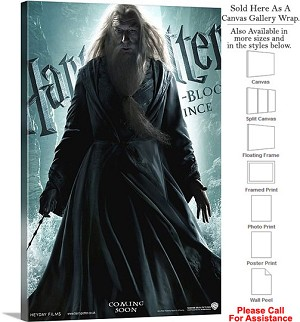"Harry Potter and the Half Blood Prince Movie Art-3 Canvas Wrap 20"" x 30"""