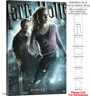 "Harry Potter and the Half Blood Prince Movie Art-7 Canvas Wrap 20"" x 30"""