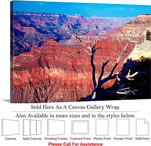 "Grand Canyon National Park in Arizona Landscape-62 Canvas Wrap 30"" x 20"""