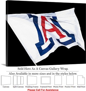 "University of Arizona Wildcats Flag in the Wind Canvas Wrap 30"" x 23"""