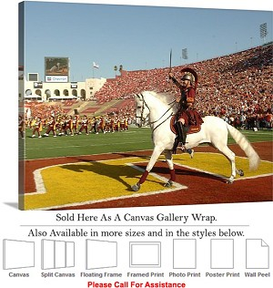 "University of Southern California Trojan Traveler Canvas Wrap 30"" x 23"""