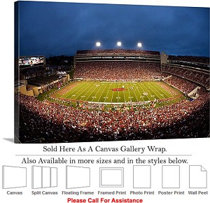 "University of Arkansas Donald W Reynolds Stadium Canvas Wrap 30"" x 20"""