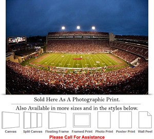 "University of Arkansas Donald W Reynolds Stadium Photo Print 24"" x 16"""