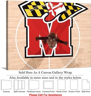 "University of Maryland Testudo at Comcast Center Canvas Wrap 30"" x 23"""