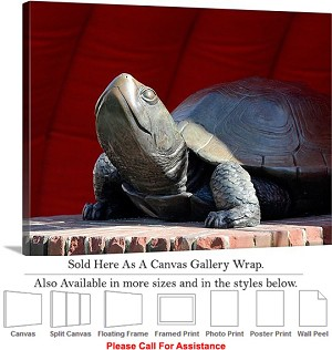 "University of Maryland College Fear the Turtle Canvas Wrap 30"" x 23"""